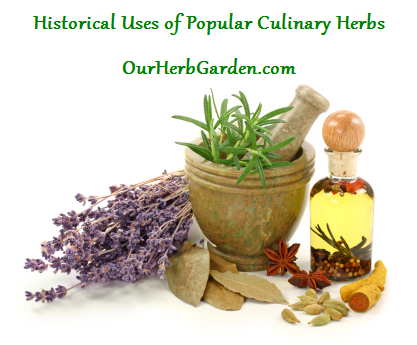 Historical Uses of Herbs